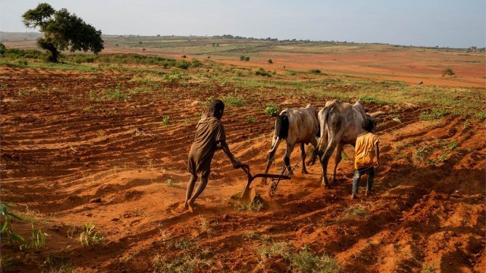 The Burden of Climate Change on Rural and Underserved Populations